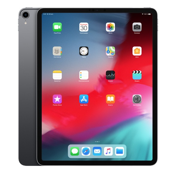 iPad Pro 12,9 дюймов Space Gray